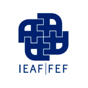 Instituto Español de Analistas Financieros (IEAF- FEF)
